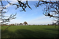 SP7911 : Field near Bishopstone by Des Blenkinsopp