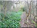 SE0921 : Elland FP8 near Clay Hall by Humphrey Bolton