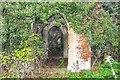 TG2821 : St Michael's church ruins, Sco Ruston by Inkedmik