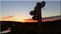 NZ5812 : Sunrise on Newton Moor by Mick Garratt
