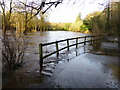 H4772 : Flooding on the Highway to Health path, Mullaghmore by Kenneth  Allen