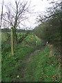 TL6358 : Footpath by Keith Evans