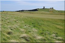 NU2522 : Golf course and Dunstanburgh Castle by Philip Halling