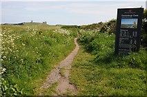 NU2422 : Coast path on Embleton Beach by Philip Halling