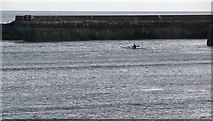 J3829 : Canoeist crossing the entrance to Newcastle Harbour by Eric Jones