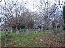 TQ5802 : St Mary, Willingdon: churchyard (f) by Basher Eyre