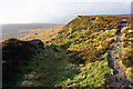 SK2385 : Path off Stanage Edge by Bill Boaden