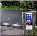 SU9677 : National Cycle Network Route 4 direction sign, Eton by Jaggery