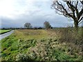 SK2208 : Uncultivated land, west of Syerscote Lane by Christine Johnstone