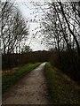 SK2368 : Monsal Trail near Bakewell by Steve  Fareham