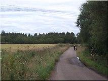 NH6454 : A walk on the Black Isle by Richard Webb