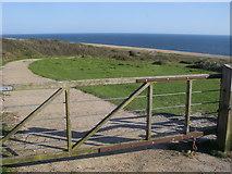 SY5088 : Path down to Cogden Beach by Shaun Ferguson