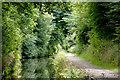 SJ9003 : Marsh Lane narrows at Fordhouses, Wolverhampton by Roger  Kidd