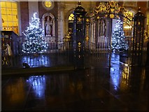 SO8554 : Christmas trees in front of the Guildhall by Philip Halling