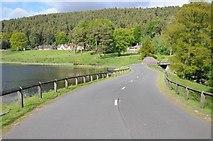 NU0702 : Road to Cragside by Philip Halling