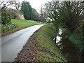 TL0485 : Lane and dike in Barnwell, Northamptonshire by Richard Humphrey