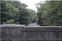 SK2572 : River Derwent by N Chadwick
