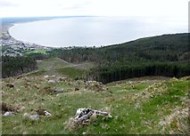 J3629 : Donard Forest from the slopes of Slievenamaddy by Eric Jones