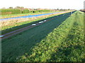 TL5292 : The Old Bedford River - The Ouse Washes near Welney by Richard Humphrey