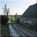 TL6149 : West Wickham: winter light and shade by John Sutton