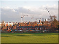 TQ3089 : Cranes over Hornsey by Julian Osley