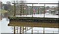 J3371 : Pontoon, River Lagan, Stranmillis, Belfast (December 2015) by Albert Bridge