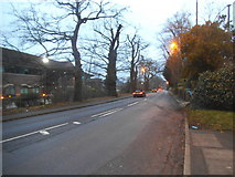 TQ0762 : Brooklands Road by St George's Hill by David Howard