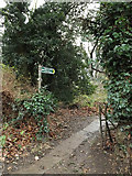 TL1314 : Footpath to the Nickey Line by Adrian Cable
