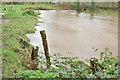 J3268 : The Minnowburn in flood, Belfast - December 2015(2) by Albert Bridge