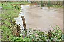 J3268 : The Minnowburn in flood, Belfast - December 2015(2) by Albert Bridge