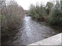 J3731 : The Shimna River in spate below the New Bridge by Eric Jones