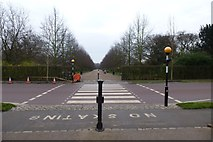 TQ2882 : Crossing Chester Road by DS Pugh