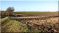 TG3910 : Farmland west of Acle by Evelyn Simak