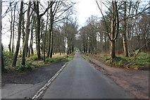 NS2209 : Road to Swan Pond Car Park by Billy McCrorie