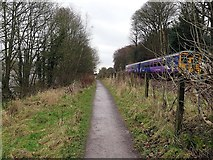 NZ1465 : Keelmans Way & approaching Tyne Valley Line 'Sprinter' by Andrew Curtis