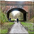 SJ9594 : Dog walkers on the Trans Pennine Trail by Gerald England