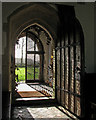 TL3635 : Reed: St Mary - through the south door by John Sutton