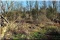 SE4698 : Ruins of Cote Garth by Derek Harper