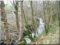 NY2431 : Chapel Beck, downstream of Walk Mill Bridge by Christine Johnstone