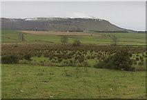 NO2010 : Farmland west of Strathmiglo by William Starkey