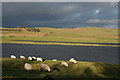 NY8067 : Grindon Lough by Anne Burgess