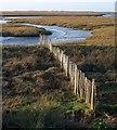 TG0244 : Fence across the marshes, Blakeney by Derek Harper