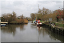 TG3204 : Rockland Staithe by Roger Jones
