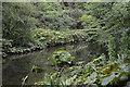 SK1072 : River Wye by N Chadwick