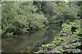 SK1172 : River Wye by N Chadwick