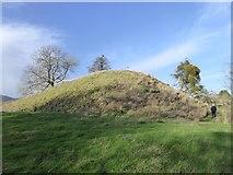 SO7937 : The castle tump, Castlemorton by David Smith