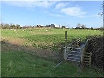 SO7937 : Footbridge near the castle tump, Castlemorton by David Smith