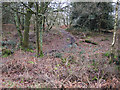 TQ1043 : Single track route on Holmbury Hill by Hugh Venables