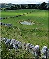 SK1358 : Dew pond near Beresford Dale by Mat Fascione