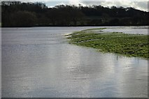 TQ5203 : The Cuckmere topping its Banks by Peter Jeffery